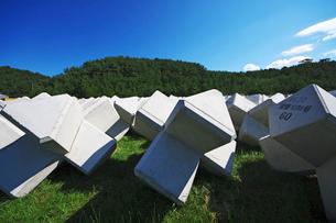 夏泊半島のテトラポットの写真素材 [FYI01358652]