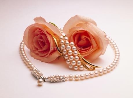 バラと真珠のネックレスの写真素材 [FYI01358754]