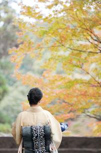和服の日本人女性の写真素材 [FYI01360435]