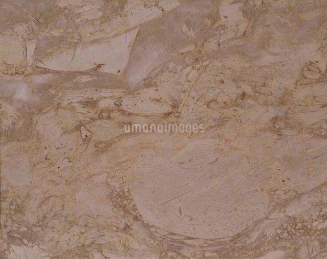 大理石の写真素材 [FYI01360654]