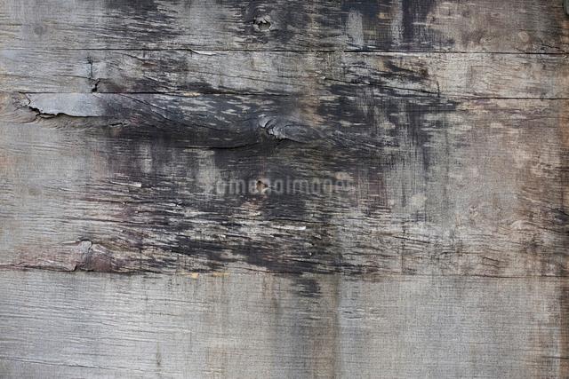 木の板の写真素材 [FYI01361254]