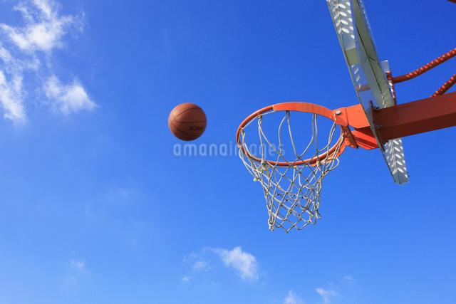 バスケットゴールの写真素材 [FYI01363516]