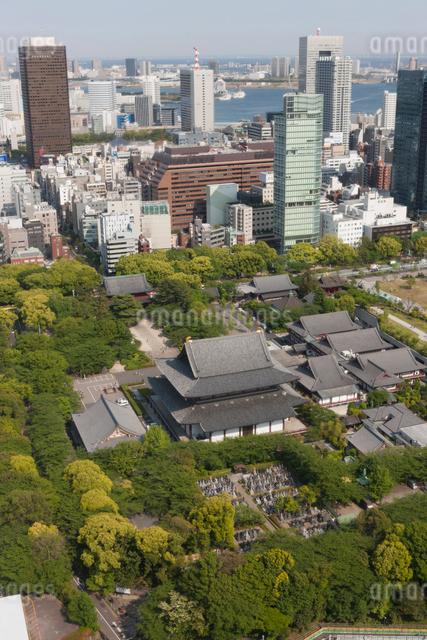 芝 増上寺の写真素材 [FYI01363705]