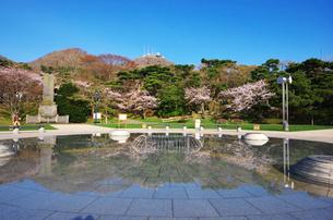 函館公園の桜と函館山の写真素材 [FYI01363754]