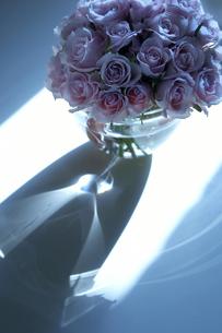 バラと花器の写真素材 [FYI01363973]