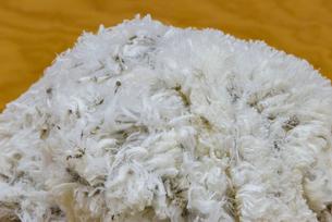 刈り終えたヒツジ一匹分の羊毛の写真素材 [FYI01364795]
