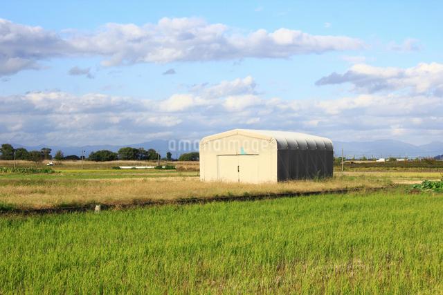 野原に組み立てられた大きいテント倉庫の写真素材 [FYI01365037]