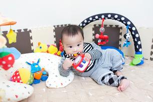 赤ちゃんの写真素材 [FYI01365054]