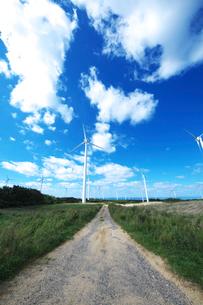 風力発電の写真素材 [FYI01366512]