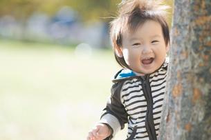 樹から覗く笑顔の赤ちゃんの写真素材 [FYI01366530]