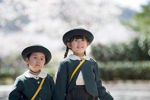 桜並木と2人の幼稚園児の写真素材 [FYI01367028]