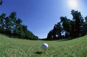 ゴルフボール 緑 空の写真素材 [FYI01367332]