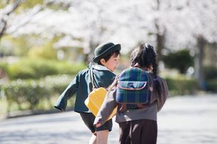 走る2人の幼稚園児の後姿の写真素材 [FYI01367350]