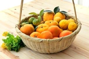 柑橘盛合せ みかん,柚子,花柚子,シークワーサ,レモン,菜の花の写真素材 [FYI01367677]