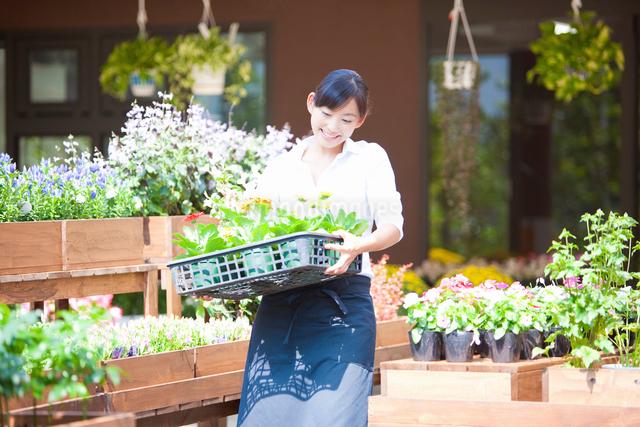花屋の店員の女性の写真素材 [FYI01368235]