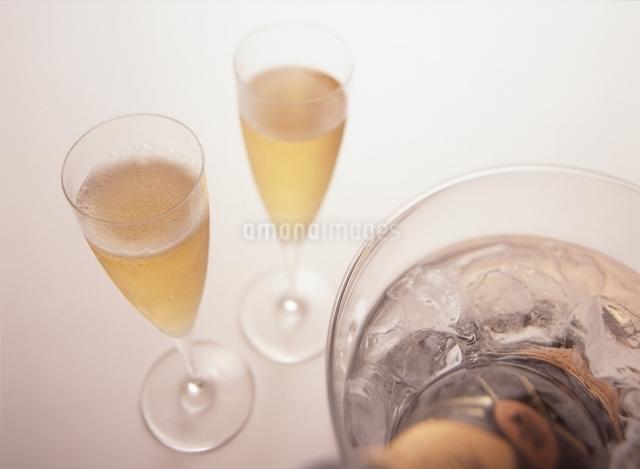 2杯のシャンパンとワインクーラーの写真素材 [FYI01368381]