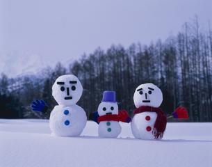 雪ダルマの写真素材 [FYI01369655]