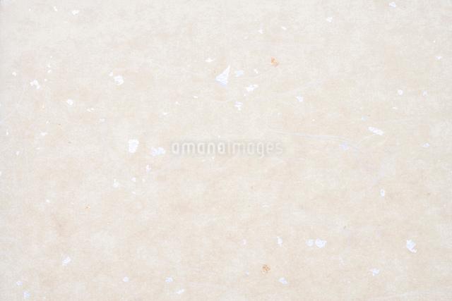 和紙の写真素材 [FYI01370070]