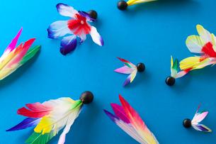 羽子板の羽根の写真素材 [FYI01370249]
