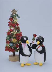 花束を差し出すペンギンのカップルの写真素材 [FYI01370513]