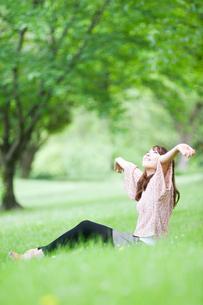 新緑の中で伸びをする女性の写真素材 [FYI01370697]