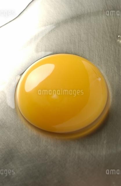 卵の黄身と白身のアップの写真素材 [FYI01371731]