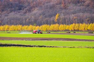 トラクターと牧草地の写真素材 [FYI01373022]