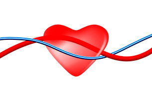 心臓と血管の写真素材 [FYI01373042]