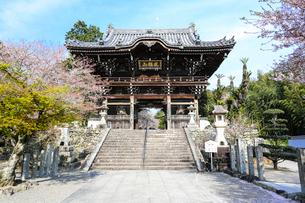 粉河寺(中門)の写真素材 [FYI01374257]