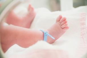 新生児の脚の写真素材 [FYI01374339]