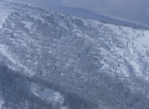 雪積もる山肌の写真素材 [FYI01375245]