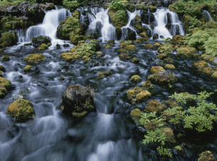 羊蹄山湧水の写真素材 [FYI01375271]