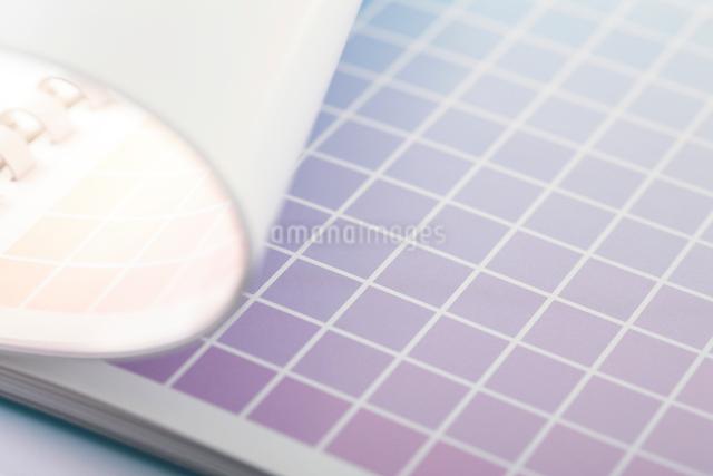 カラーチャートの写真素材 [FYI01376071]