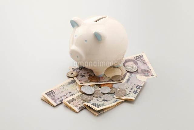 豚の貯金箱と現金の写真素材 [FYI01377439]