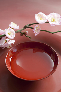 梅の花と盃の写真素材 [FYI01377964]