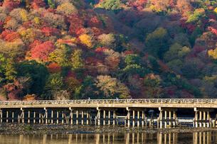 渡月橋と京都嵐山の秋の写真素材 [FYI01379763]