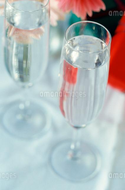 グラスの写真素材 [FYI01380243]