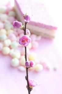 桃の花と雛あられの写真素材 [FYI01380371]
