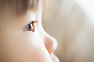 赤ちゃんの横顔の写真素材 [FYI01381187]