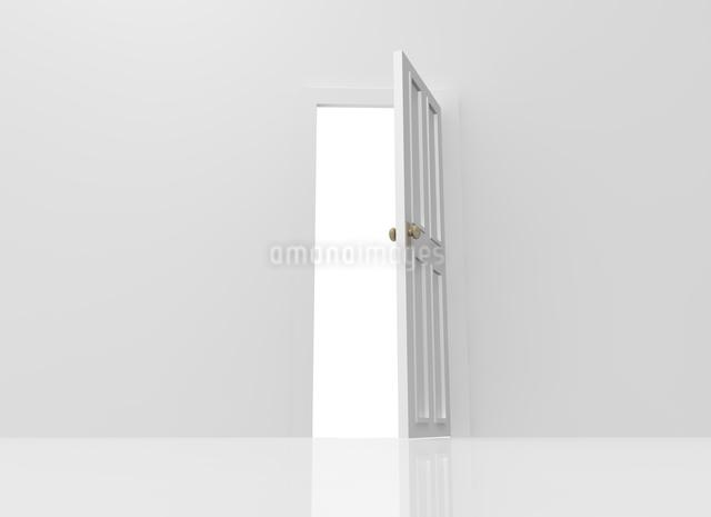 ドアの写真素材 [FYI01381887]