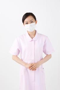 歯科衛生士の写真素材 [FYI01382691]