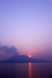 垂水市からの桜島の夕日の写真素材 [FYI01383317]