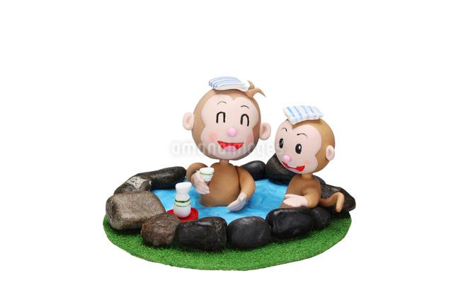 温泉と申の親子の写真素材 [FYI01384586]