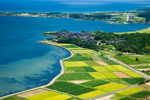 久美浜湾の田園風景の写真素材 [FYI01385231]