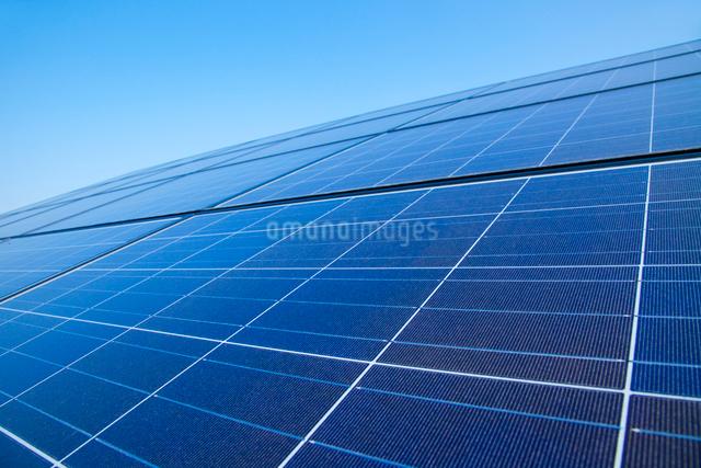 太陽光発電パネルの写真素材 [FYI01385915]