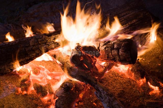 キャンプファイヤーの火の写真素材 [FYI01386569]