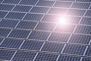 太陽光パネルの写真素材 [FYI01386601]