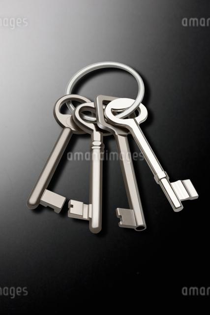 鍵の写真素材 [FYI01387706]