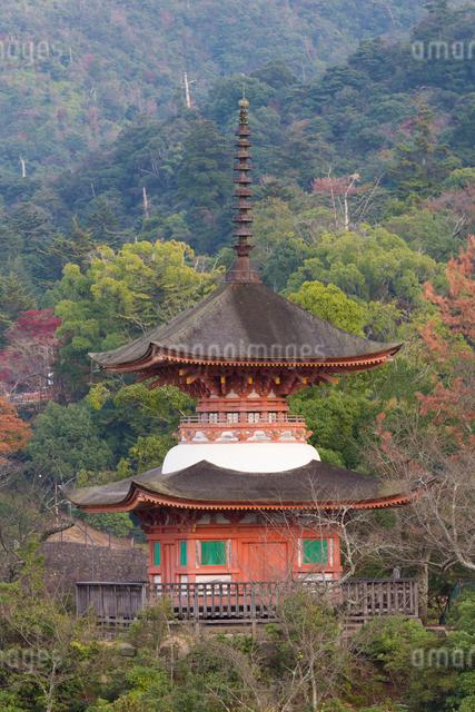 紅葉の厳島神社多宝塔の写真素材 [FYI01388272]