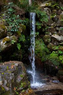 日吉大社(岩滝)の写真素材 [FYI01388951]